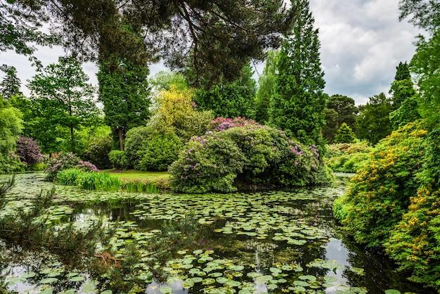 Jardim público inglês no verão Foto Premium