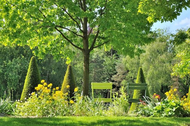 Jardim verde Foto Premium