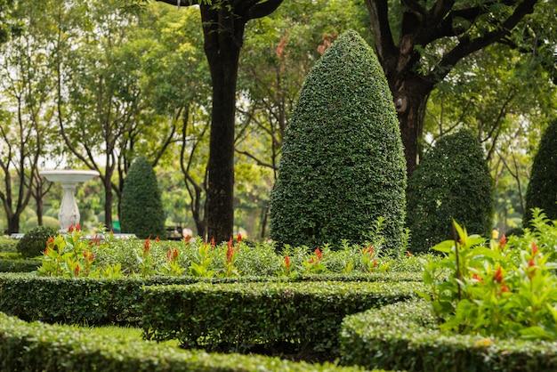 Jardinagem e paisagismo com árvores decorativas Foto Premium