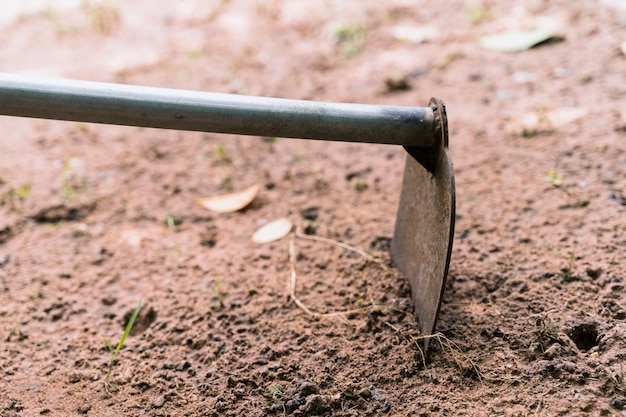 Jardinagem Foto gratuita