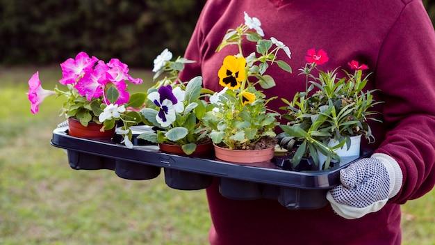 Jardineiro de close-up segurando vasos de flores Foto gratuita