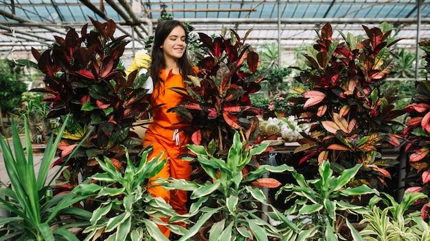 Jardineiro feminino pulverização de água em plantas Foto gratuita