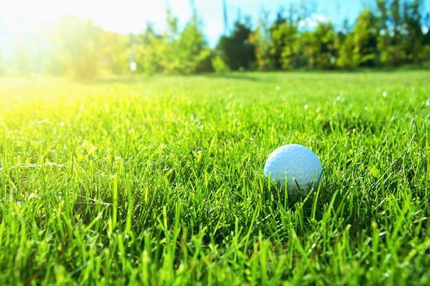 Jogo de golfe. Foto gratuita