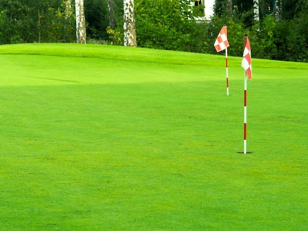 Jogo, entretenimento, esporte e lazer, close-up da marca de bandeira no buraco no campo de golfe Foto Premium