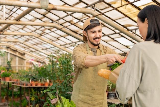 Jovem agricultor alegre de boné e avental, colocando vegetais na sacola do cliente no mercado de alimentos orgânicos Foto Premium