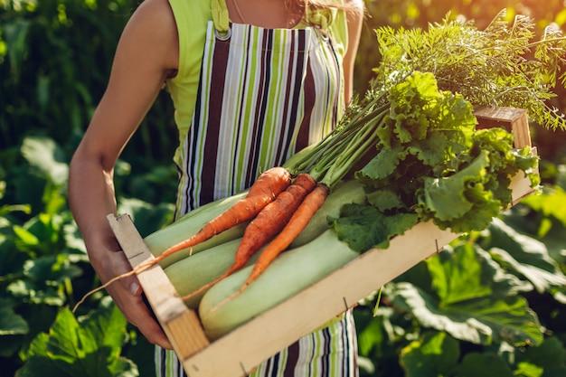 Jovem, agricultor, segurando, caixa madeira, enchido, com, legumes frescos Foto Premium