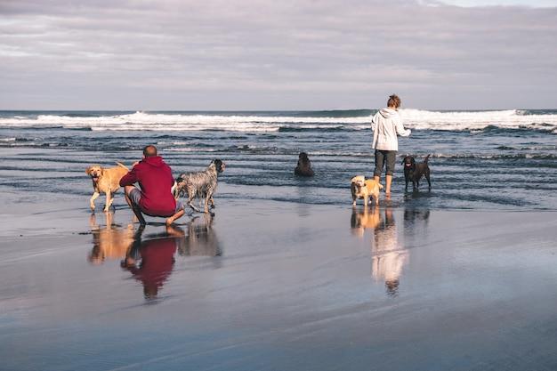 Jovem casal tirando fotos e brincando com seus cinco cães na praia na primavera nas astúrias, espanha. um dos cães está cagando no mar Foto Premium