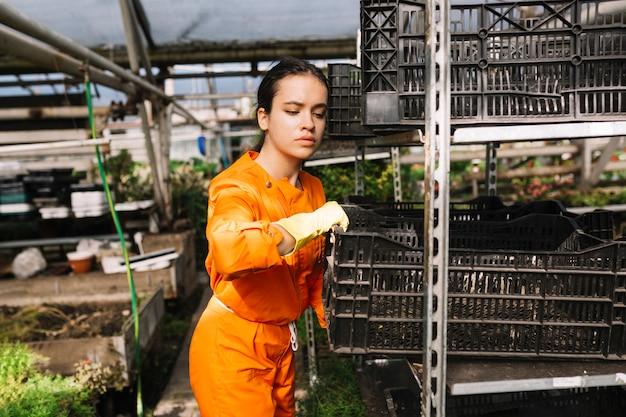Jovem, femininas, jardineiro, removendo, crate, de, prateleira Foto gratuita