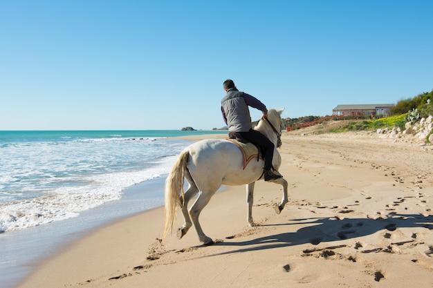 Jovem montar um cavalo branco na praia Foto Premium