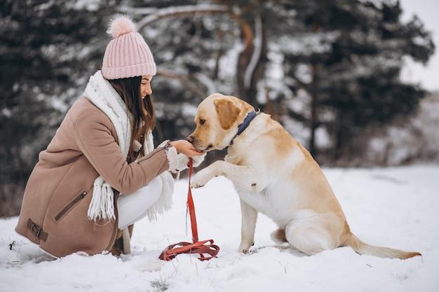 Jovem mulher andando com seu cachorro em um parque de inverno Foto gratuita