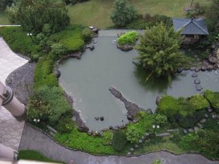 Koi pond abaixo num dia chuvoso Foto gratuita