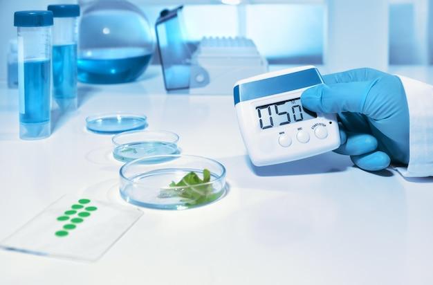 Laboratório biológico ou bioquímico, closeup na mão enluvada, segurando o temporizador digital Foto Premium