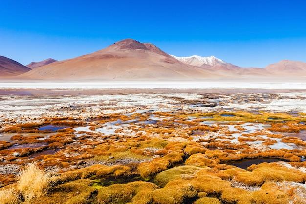 Lago, bolívia altiplano Foto Premium