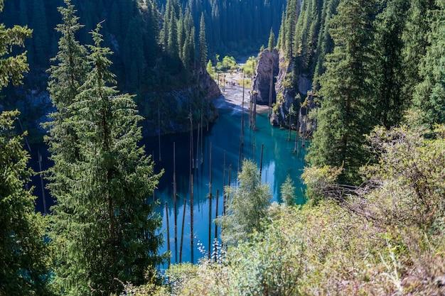 Lago kaindy - lago de montanha no cazaquistão Foto Premium