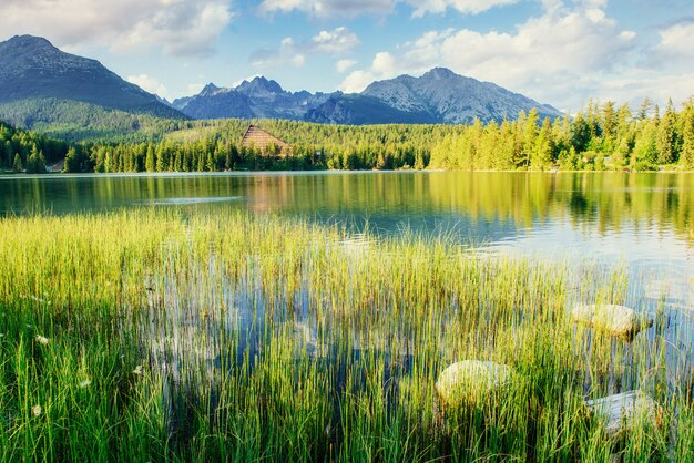 Lago majestoso da montanha no parque nacional tatra alto. Foto Premium
