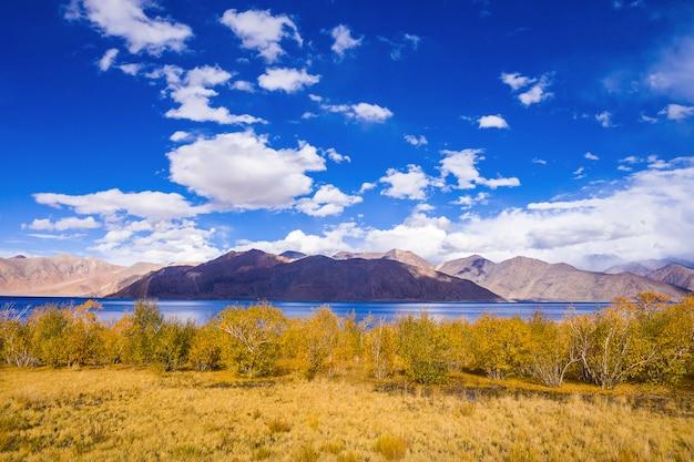 Lago pangong Foto Premium