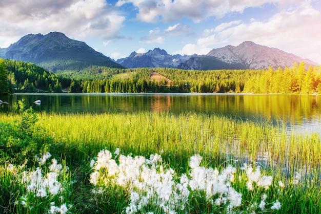 Lago strbske pleso na montanha tatras alta, eslováquia Foto Premium