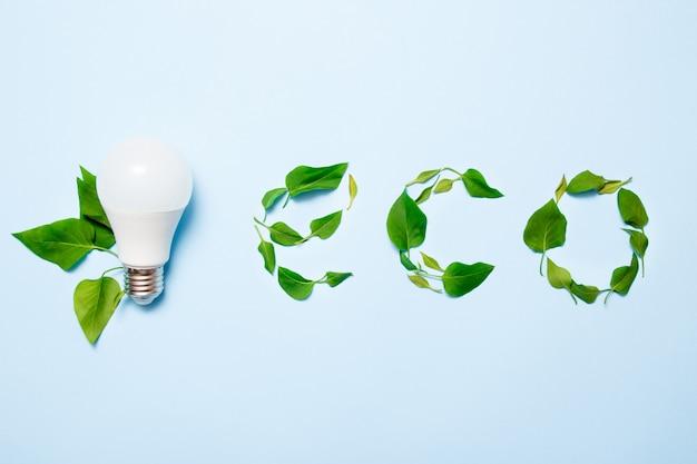 Lâmpada conduzida com folhas em um fundo azul. conceito de eficiência de energia verde. Foto Premium