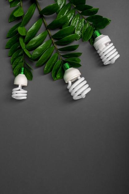 Lâmpada de três diodos emissores de luz com folha verde, conceito da energia de eco, fim acima. Foto Premium