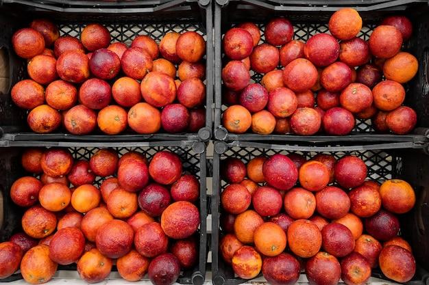 Laranjas vermelhas na caixa. variedade de laranjas frescas cultivada na loja. Foto Premium