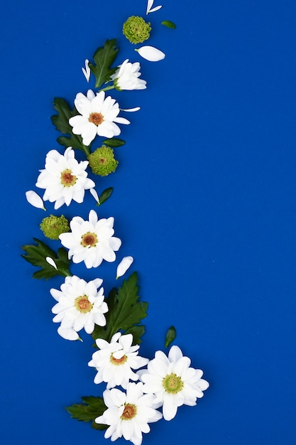 Layout criativo com flores brancas e folhas verdes em um espaço azul. conceito de primavera. vista plana leiga, superior. Foto Premium
