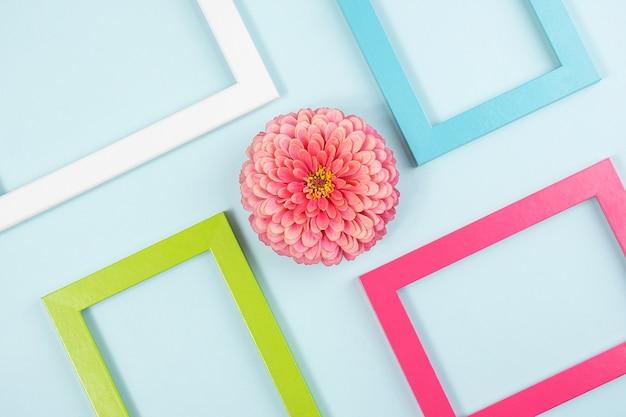 Layout criativo feito de uma flor e molduras coloridas brilhantes. vista superior plana lay copie o espaço. Foto Premium