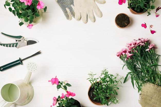 Layout de flores e suprimentos para jardinagem Foto gratuita