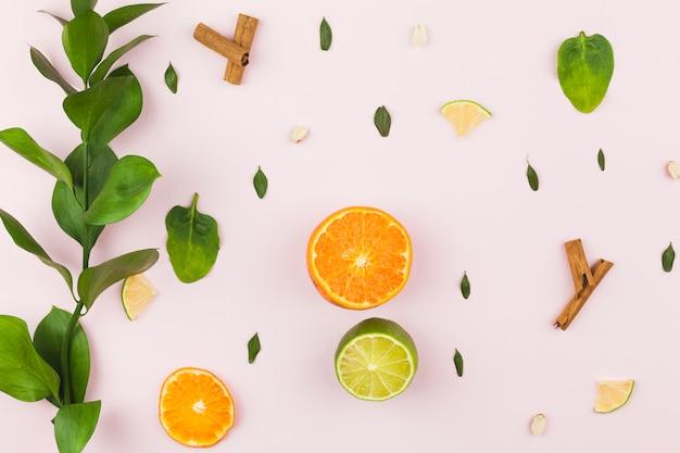 Layout de frutas tropicais e folhagem verde Foto gratuita