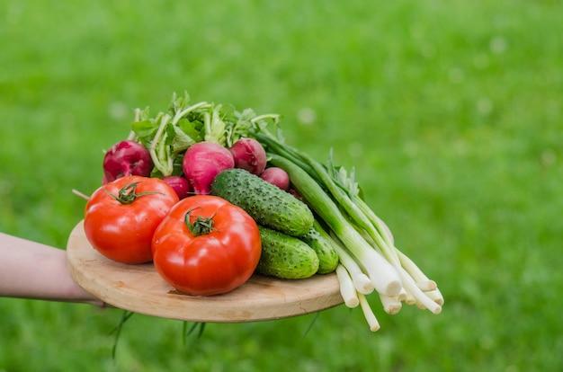Legumes crus frescos em uma bandeja de madeira Foto Premium