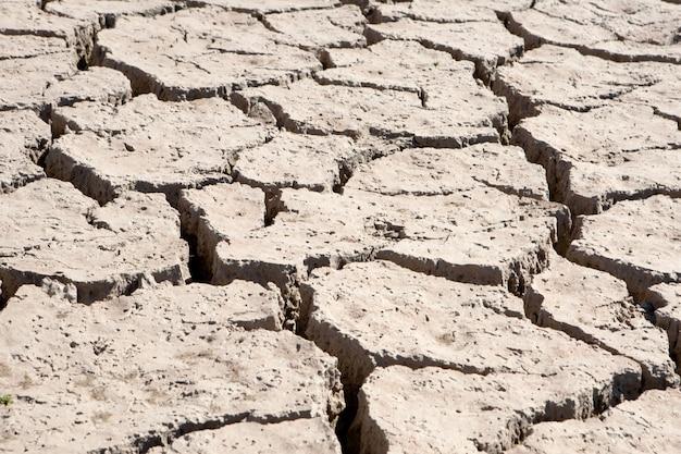 Leito fluvial sem água para a seca Foto Premium