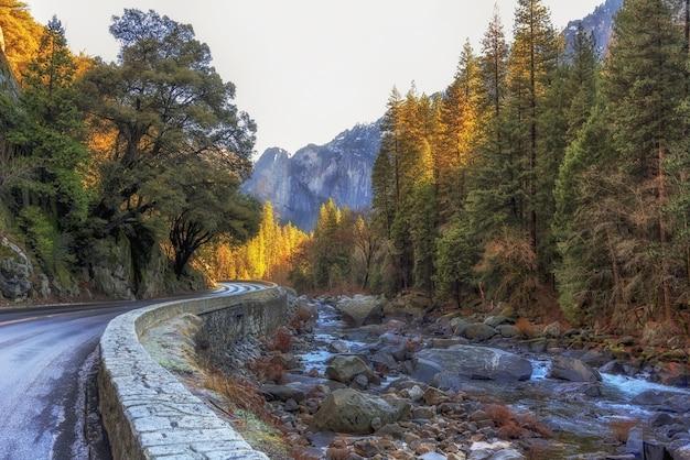 Leito rochoso do rio ao lado de uma estrada cercada por árvores no parque nacional de yosemite Foto gratuita