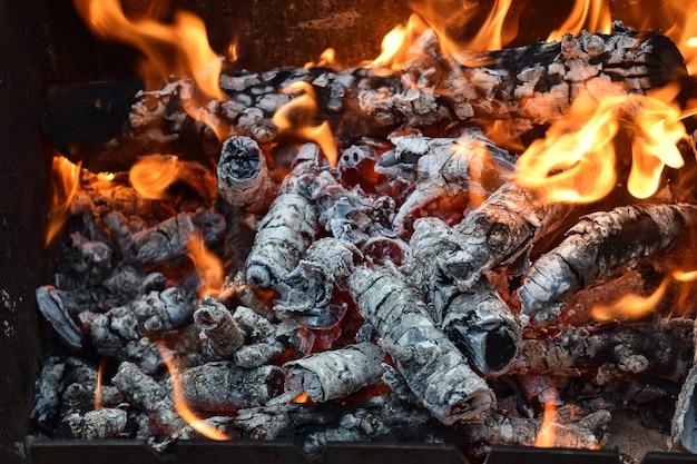 Lenha, fogo quente, tábuas, natureza, floresta selvagem Foto Premium