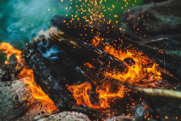 Lenha vívida sem chama queimada no fogo de perto Foto Premium