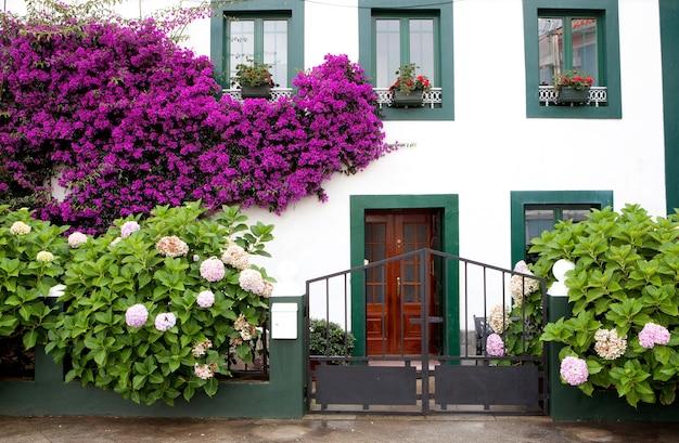 Linda casa com panelas em suas janelas Foto Premium