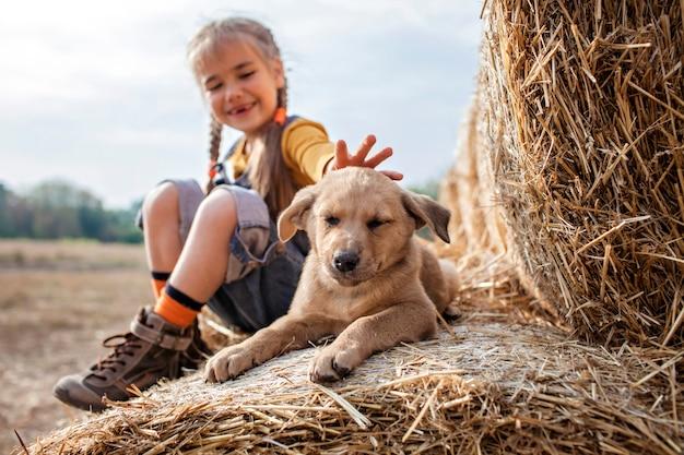 Linda garota brincando com cachorro em rolos de fardos de feno no campo Foto Premium