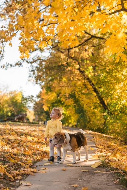 Linda garota sorridente e seu cão de estimação em pé na passarela no parque Foto gratuita