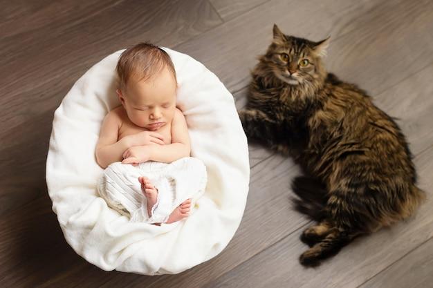 Linda menina recém-nascida está dormindo com um gato Foto Premium