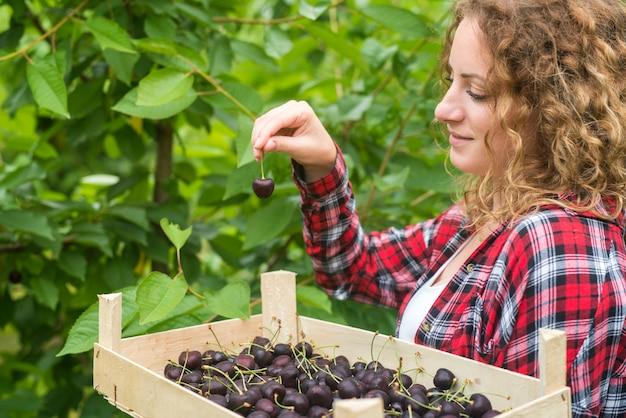Linda mulher gostando de colher cerejas em um pomar verde Foto gratuita