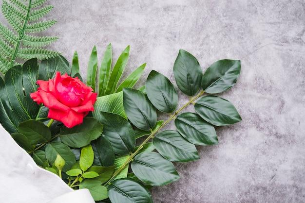 Linda rosa vermelha em galhos verdes sobre o fundo de granito Foto gratuita
