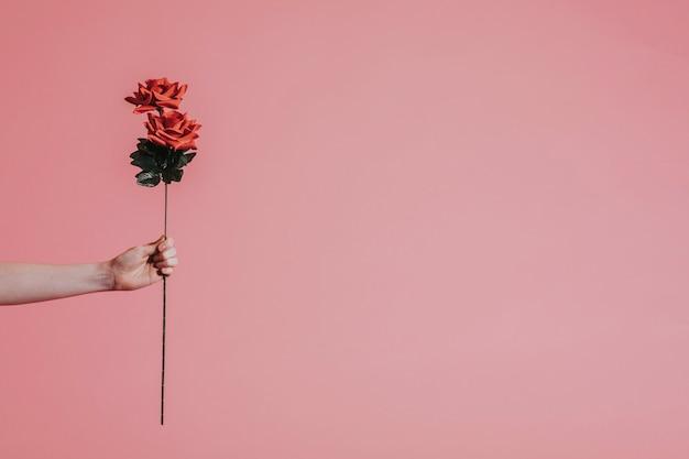 Linda rosa vermelha para dia dos namorados Foto gratuita