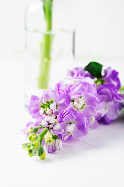 Lindas flores da primavera na mesa branca, foco seletivo Foto Premium