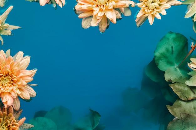 Lindas flores na água com espaço de cópia Foto gratuita