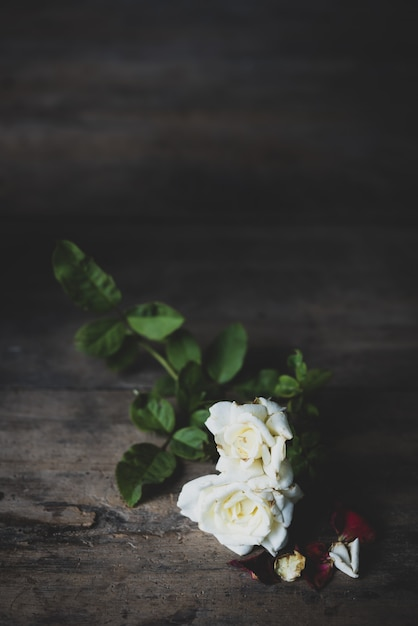 Lindas rosas vermelhas e brancas secas em fundo de madeira grunge Foto Premium