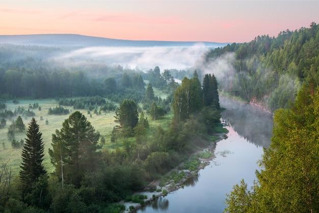Lindo amanhecer enevoado no parque natural deer springs Foto Premium