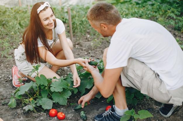 Lindo casal trabalha em um jardim Foto gratuita