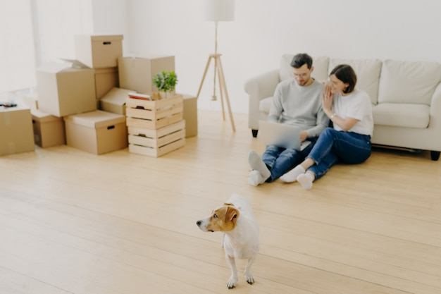 Lindo casal usa laptop juntos, compra móveis online para o novo apartamento, senta no chão perto do sofá Foto Premium