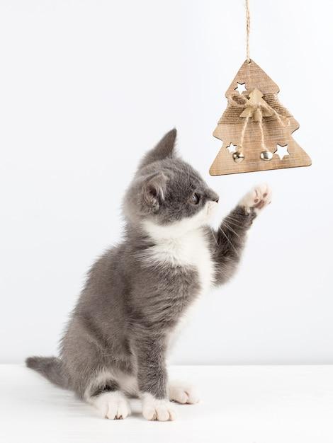 Lindo gatinho cinzento brincando com um brinquedo de natal. Foto Premium