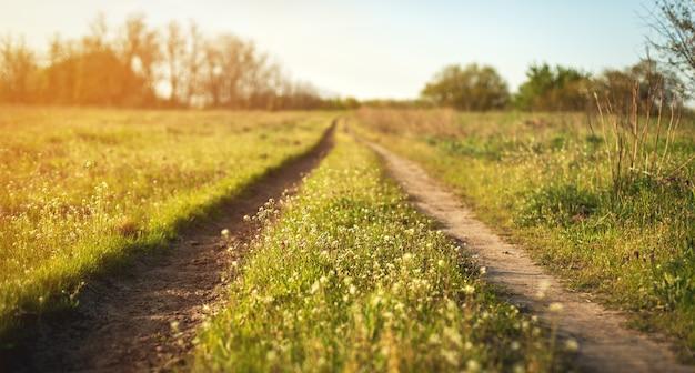 Lindo pôr do sol. paisagem de primavera com estrada no campo Foto Premium