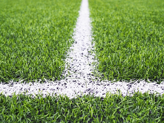 Linha branca na grama verde no campo de futebol ou no campo de futsal. Foto Premium