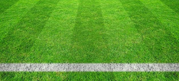 Linha de futebol na grama verde do campo de futebol. teste padrão verde do campo do gramado para o fundo do esporte. Foto Premium